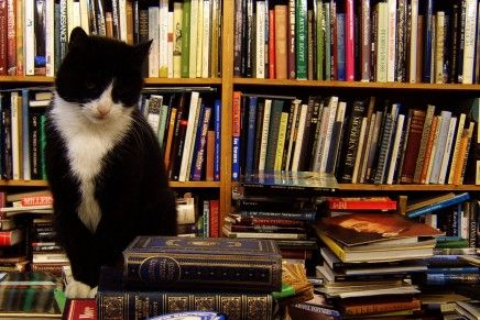 9 Reasons Why Independence Will Benefit Literature And Publishing
